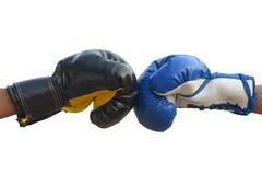 Перчатки бокса закрывают вверх по предохранителю Стоковое фото RF