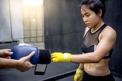 Перчатки бокса молодого азиатского боксера женщины нося Стоковое Изображение