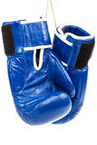 Перчатки бокса на белой предпосылке Стоковое Изображение RF