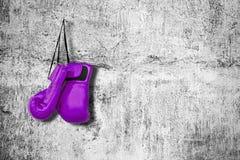 Перчатки бокса на стене Стоковое фото RF