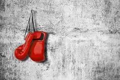 Перчатки бокса на стене Стоковая Фотография