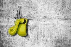 Перчатки бокса на стене стоковые изображения rf