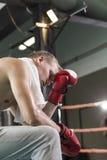 Перчатки бокса утомленного боксера нося Стоковые Изображения RF