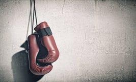 Перчатки бокса Стоковое Фото