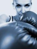 перчатки девушки бокса Стоковая Фотография