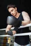 Перчатки заботливого боксера нося Стоковое Фото