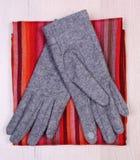Перчатки и шарф на деревянной предпосылке, одежда на осень или зима Стоковое Изображение RF