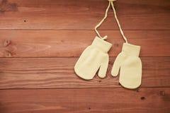 2 перчатки на предпосылке Стоковые Изображения