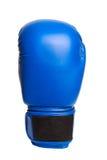 Перчатки одного голубые бокса на белой предпосылке Стоковое фото RF
