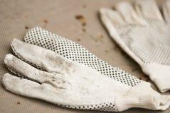 Перчатки сада Стоковое Фото