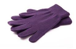 перчатки связали пурпур Стоковое Изображение