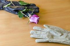 2 перчатки с розой Стоковые Изображения