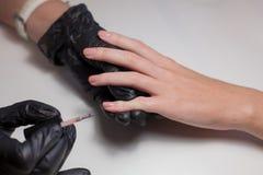Перчатки Manicurist черные делая маникюр на салоне красоты на белой предпосылке Маникюр красит обнажённую фигуру красивейше Стоковое Изображение