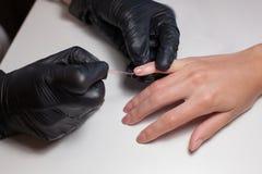 Перчатки Manicurist черные делая маникюр на салоне красоты на белой предпосылке Маникюр красит обнажённую фигуру красивейше Стоковое Фото