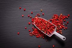 Перчинка концепции специи еды органическая розовая или розовая ягода на blac Стоковое фото RF