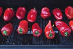 перчит зажаренный в духовке красный цвет Стоковое Изображение RF