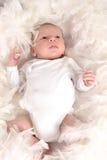пер младенца Стоковое фото RF
