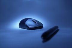 пер мыши Стоковые Фото