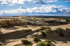 Пески вертела Curonian Стоковые Фотографии RF