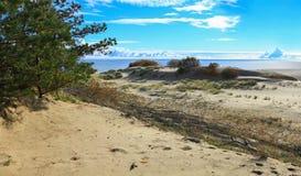 Пески вертела Curonian Стоковая Фотография RF