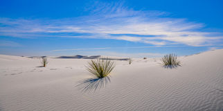 пески памятника дюн пустыни национальные белые Стоковые Фотографии RF