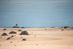 Пески пустыни Стоковое Фото
