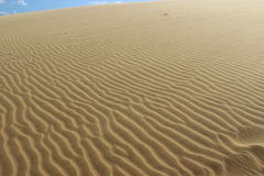 Пески пустыни Стоковое фото RF