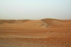 Пески Liwa Стоковые Фото