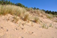песок высокого ряда дюны динамически Jurmala, Балтийское море, Латвия Стоковое фото RF