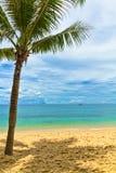 песок Вьетнам quoc phu ладони пляжа Стоковое Изображение