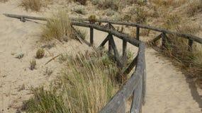 Песок в западной пустыне Стоковое Изображение RF