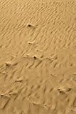песок детали пляжа Стоковые Изображения