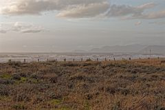 песок дюны в пляже marmi dei сильной стороны Стоковые Изображения