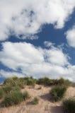 песок дюны пляжа Стоковое Фото