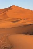 песок дюны Стоковые Изображения RF