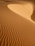 песок дюны Стоковое Изображение