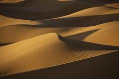 песок дюн пустыни Стоковая Фотография RF