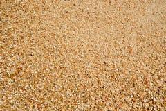 песок зерен Стоковая Фотография RF
