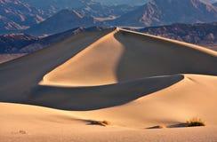 песок зиги дюны большой Стоковое Фото