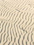 Песок и ветер Стоковые Изображения RF
