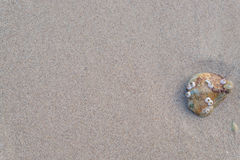 Песок и камень Стоковые Фотографии RF
