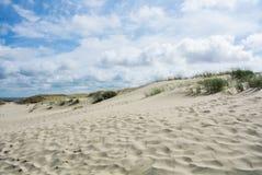 Песок и сухая трава дюн на национальном парке Curonian плюют Стоковое Изображение RF