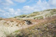 Песок и сухая трава дюн на национальном парке Curonian плюют Стоковое фото RF