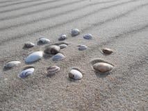 Песок и seashells, северное море, Нидерланды Стоковое Фото