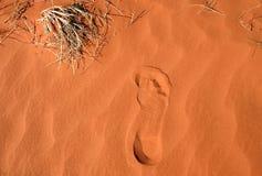 песок красного цвета следа ноги стоковые фото
