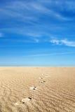 песок мягкий стоковая фотография rf