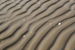 Песок на пляже Стоковая Фотография RF