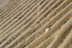 Песок на пляже стоковые изображения