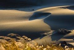 песок океана дюн Стоковая Фотография RF