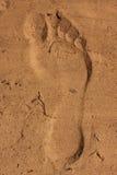песок отпечатка ноги Стоковые Фотографии RF